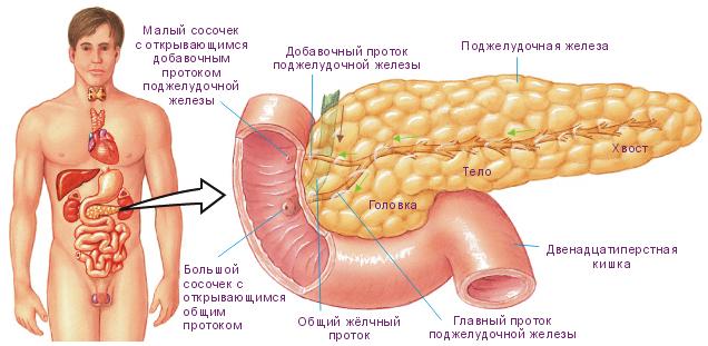 Препараты для лечения гепатита с на украине