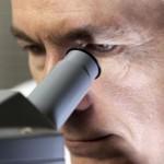 Что показывает анализ кала на дисбактериоз?