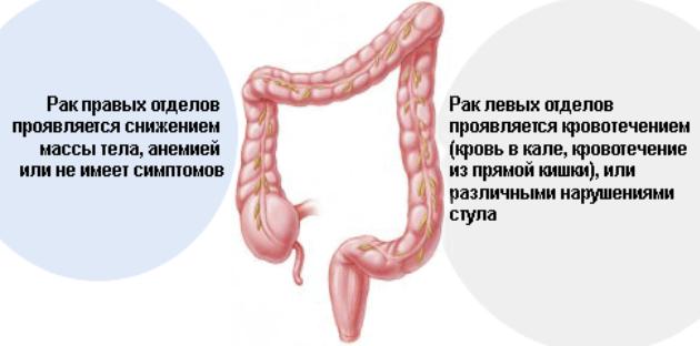 Диета после биопсии кишечника