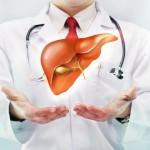 Фиброз печени: диагностика и лечение