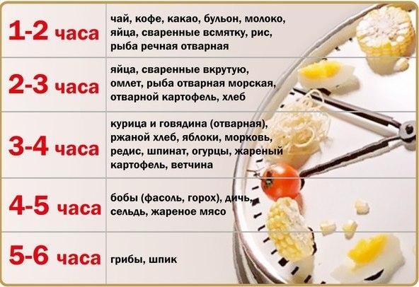 Как сделать чтобы быстрей переварилась пища