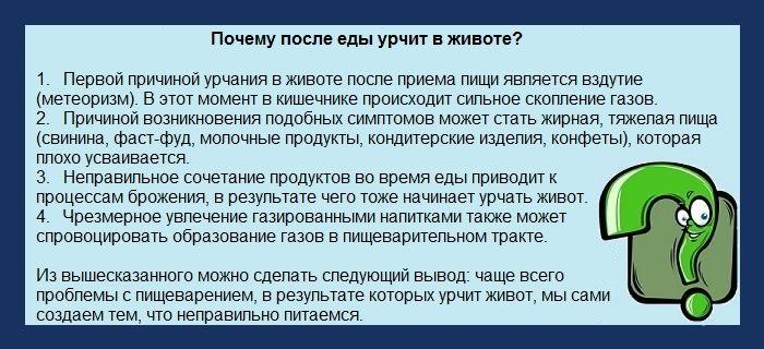 Причины урчания в желудке после еды Bolzheludka.ru